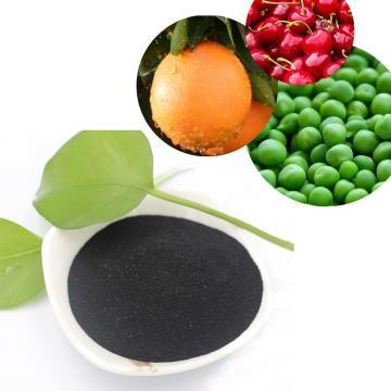 X-Humate Soluble Organic Fertilizer Potassium Humate Humic Acid with Fulvic Acid